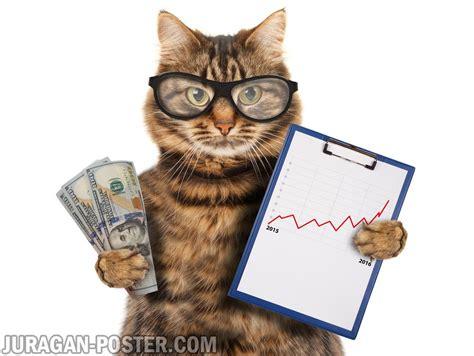 Jual Cat Poster Pentel by Animals Archives Jual Poster Di Juragan Poster