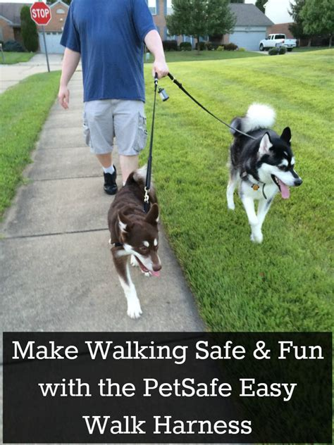 easy walk harness easy walk harness for dogs easy get free image about wiring diagram