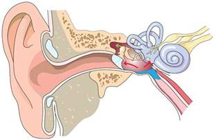 middle ear barotrauma on ascent ears diving dan