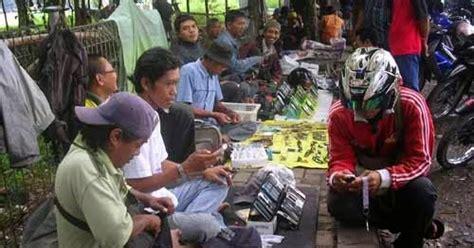 Harga Hp Merk Oppo Di Semarang semarangan jual hp batangan bodong semarang