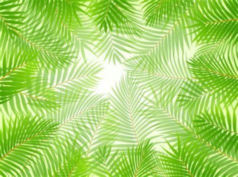 wallpaper vector daun daun hijau tema latar belakang vektor vector latar