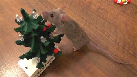 mouse decorates  christmas tree original youtube