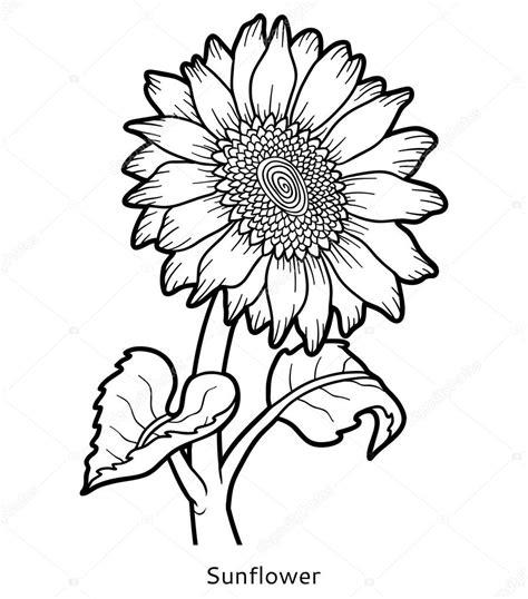 omalov 225 nky květ slunečnice stock vektor 169 ksenya savva