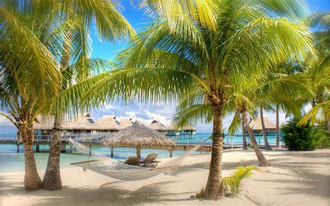 Hammock Holidays sand tropical holidays hammock palm trees swimming pools wallpaper 2560x1600 15909 wallpaperup