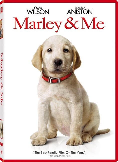 marley and me marley and me dvd www imgkid the image kid has it
