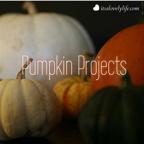 45 pumpkin decorating projects a life of simple joy five fun and easy pumpkin projects it s a lovely life