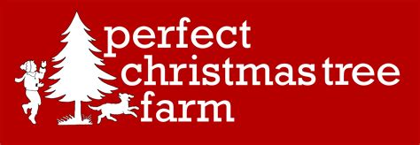 100 find christmas tree shops shop amazon com