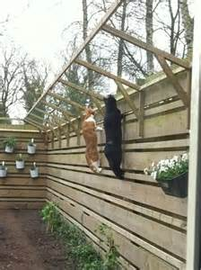 Types Of Garden Fencing Ideas - 33 best images about cat proof fence on pinterest