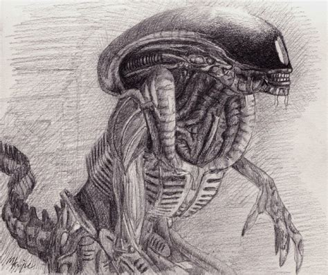 Sketches H by H R Giger Concept Sketch Drawings