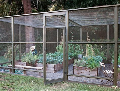 98 Best Images About Vegetable Garden Enclosures On Vegetable Garden Enclosures