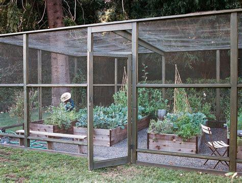 Vegetable Garden Enclosures 98 Best Images About Vegetable Garden Enclosures On