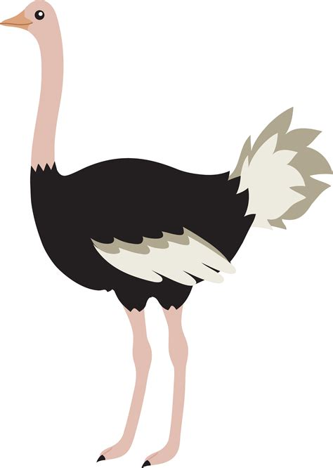 ostrich clipart ostrich clipart clipart panda free clipart images
