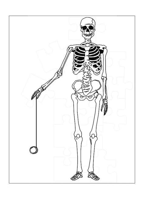 free printable skeleton coloring pages for kids