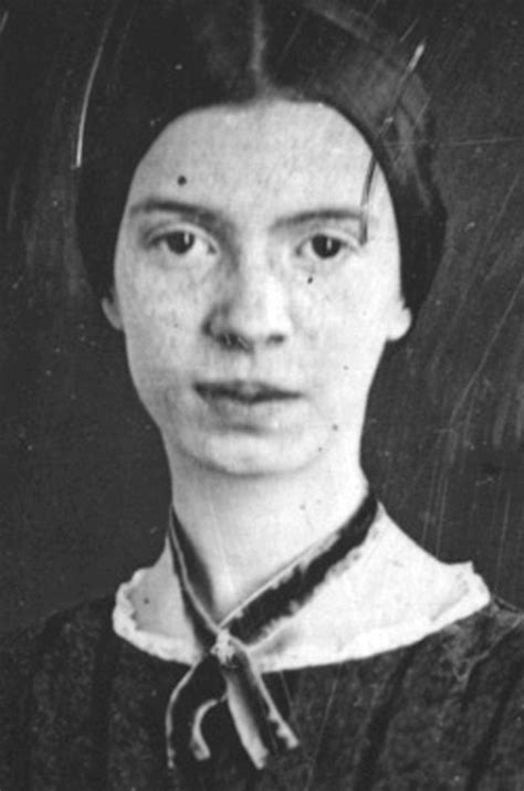 emily dickinson biography article shelf life sarah hson on reading the poetry of emily