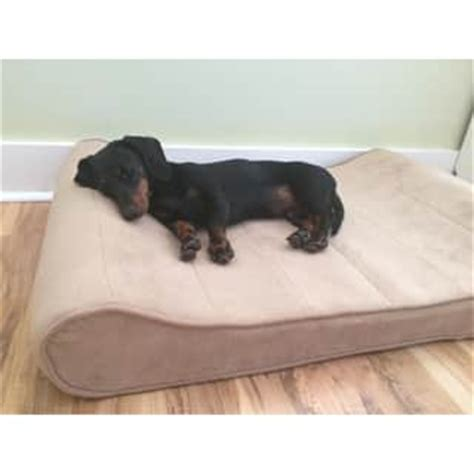brand new waterproof washable dog pet bed pillow large machine washable pet beds for less overstock com