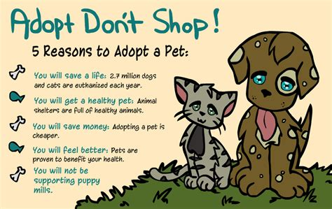 8 Reasons To Adopt A Pet Rather Than Buy by My Animal Adoption Story Adopt Don T Shop Cus