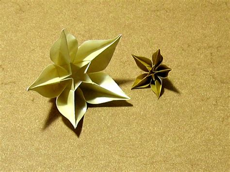 Origami Carambola Flowers - carambola sprung happy folding