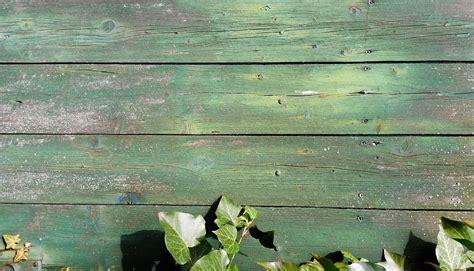imagen de fondo de madera foto gratis foto gratis fondo textura madera ivy fondos imagen