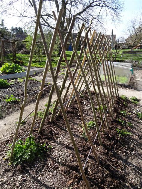 Vertikaler Garten Selber Bauen 945 die besten 25 gurken rankhilfe ideen auf