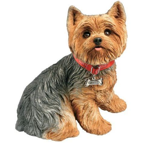 my new yorkie puppy sandicast size terrier sculpture sitting new free shipping ebay