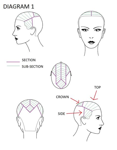 Hair Colour Sectioning Patterns by Hair Colour Annyphair