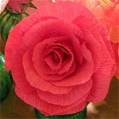 fiori di carta come realizzarli fiori di carta crespa come realizzarli fiori di carta