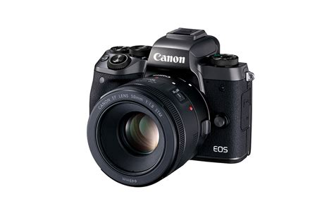canon mirrorless dslr mirrorless vs dslr cameras which is right for you