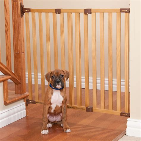 dog house with gate choosing a gate for your dog