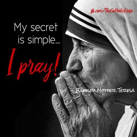 s s wounds staying catholic when you ve been hurt in the church books 25 best teresa quotes on teresa