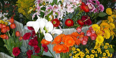 espositore fiori fior d acqua espositore per fiori
