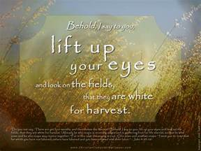 Harvest Windows Inspiration Christian Computer Wallpaper Desktop Wallpapers
