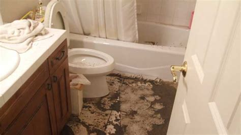bathtub and toilet backing up sewer backup causes prevention and recovery blue sky