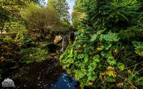 Bellevue Botanic Garden Bellevue Botanical Garden Citi Remote Office Help Desk