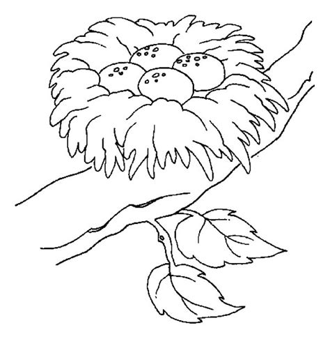 Coloring Page Nest by Nest White Coloring Nest White Coloring