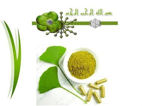 herb powerpoint themes herbal medicine authorstream