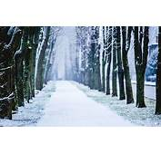 Snow Wallpapers Archives  HD Desktop 4k