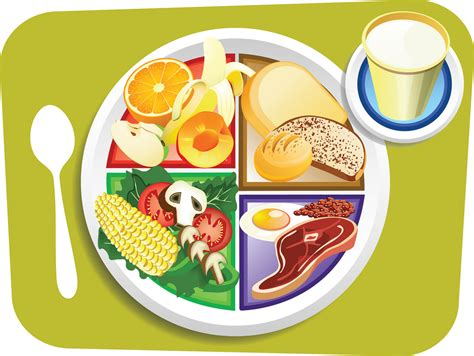 Plate Of Food Clipart food my plate breakfast portions vector illustration of