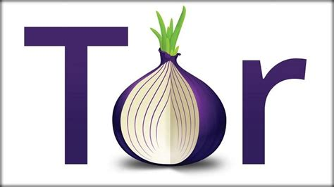 preteen tor onion 2016 report france eyes restrictions on public wi fi tor