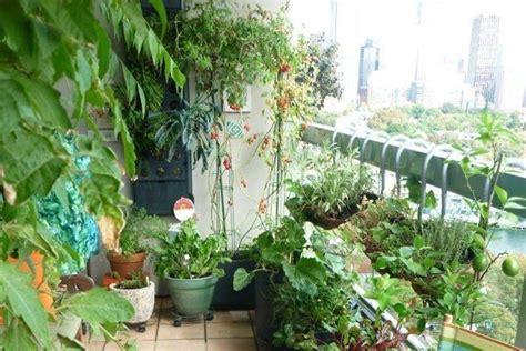 Come Creare Un Orto In Terrazzo by Coltivare Orto Sul Balcone Orto In Terrazzo Coltivare
