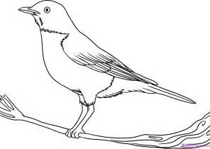 Bird Drawings Colouring Pages sketch template