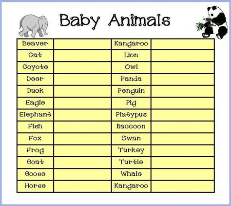 Name The Baby Animal Baby Shower by The List Of Baby Animal Names Baby Shower