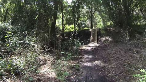 tillie fowler park mountain bike trail tillie k fowler park jacksonville