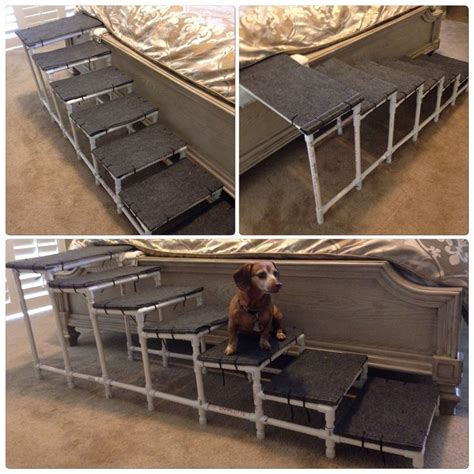 bed stairs for dogs 25 best dog r ideas on pinterest
