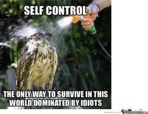Control Meme - self control by ryuzakii meme center
