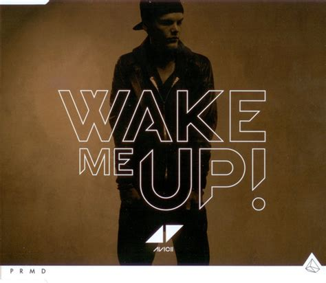 Avicii Discogs | avicii wake me up cd at discogs