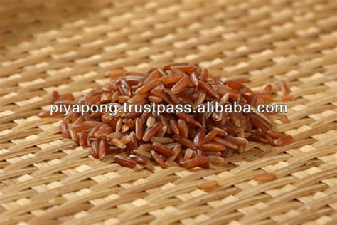 Oriprima Brown Rice 5kg Buy 1 Get 2 Free 500gram thailand golden grain white grain rice buy white