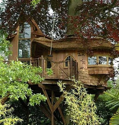 tree house designers tree house design a fairy tale home with design