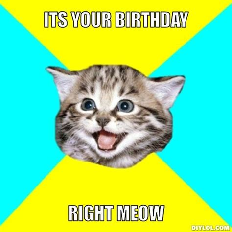 Birthday Cat Meme - memes for gt funny birthday cat memes thoughtful ideas
