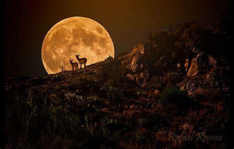 cuando cambia la luna 191 por qu 233 cambia de color la luna nuestroclima