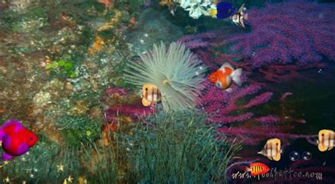 desktop background fond d 233 cran gratuit aquarium qui bouge fond d ecran anime aquarium gratuit 28 images t 233 l